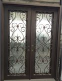Wrought Iron Double Entry Door with Rain Glass