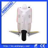 500W Electric Unicycle with CE Approval
