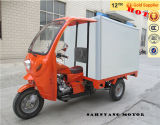 Enclosed Three Wheel Motorcycle with Cab