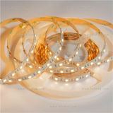 SMD 5050 30 LEDs Flexible LED Strip with CE&RoHS
