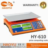 610 Large Display Price Computing Scale with IP65 Waterproof and Dustproof