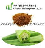 100% Natural Organic Okra Extract Hibiscus Esulentus L