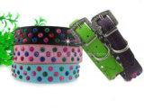 DIY PU Colorful Pet Collars/for Shining Dog/Cat (KC0046)