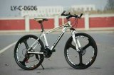 Hot New Design Mountain Bike (MTB) Model (LY-C-0606)