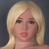 Top Quality Mannequin Sex Doll Head for Silicone Adult Dolls