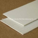 Custom High Quality Professional PVC Food Conveyor Belt