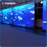 Indoor Full Color Large LED Video Screen for Advertising Media