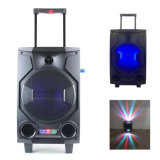 Hot Selling 8 Inch PA Speaker with Wireless Microphone