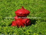 Cast Iron Fire Hydrant/Fireplug