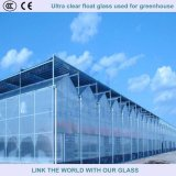 3.2mm/4mm Tempered Ultra Clear Float Glass Used for Greenhouse