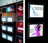Hot Sales Advertising Crystal LED Light Box (TY-DX-LS-001)