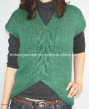 Ladies Knitted Shour Sleeve Pullover Sweater for Casual (12AW-022)