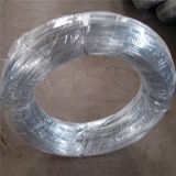 Electro Galvanized Wire for Construction Binding Wire