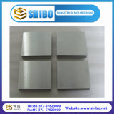 Polished Surface 99.95% Pure Molybdenum Plate for Sale