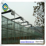 Steel Frame Outdoor Vegetable Glass Greenhouse with Hydroponic Systems