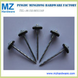Umbrella Head Twisted Shank Roofing Nail with Washer