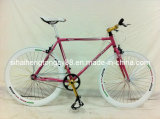Track Bicycle TRB-001
