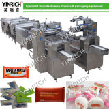 Automatic Aligner and Pillow-Type Packing Machine (DXD1000-1)
