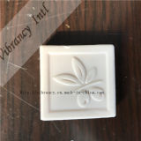 Square White Fruit Shape Hotel Soap
