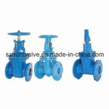 All Kinds of Cast Iron/Ductile Iron Flanged End Valves