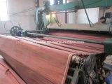 0.3mm Rotary Cut Red Hardwood Veneer for Making Plywood