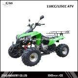 110cc Automatic Quad Bike 8inch Wheel or 10inch Wheels Automatic ATV Hot Sale