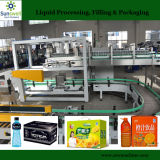 Carton Box Packing Machine for Bottled Drinking Water