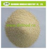 Organic Onion Granule 40-80mesh
