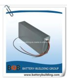 High Power 48V 30ah Lithium Li Ion Battery Pack E-Motor