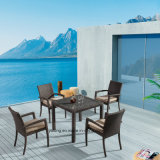 Whole Selling Outdoor Garden Furniture Dining Set with Stackable Chair and Kd Table (Yta362-1&Ytd020-10