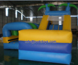 0.55m PVC Inflatable Bounce House Accept Customize Design (A047)