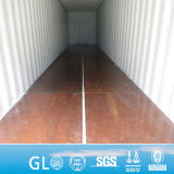 Gl BV Certified Plywood Floor Corten Steel Sea Container
