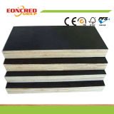 Black Film Faced Plywood/Plywood/Building Material/Formwork