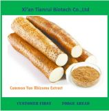 ISO Factory Supply Common Yan Rhizome Extract