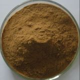 Natural Detergent Sapindus Extract Sapindoside 80%