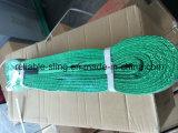 Flat Polyester Webbing Sling/Liftng Sling