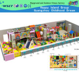 Indoor Kids Play Naughty Castle Playground for Sale (H14-0917)