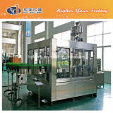 Glass Bottle Csd Functional Drinks Filling Equipment (DCGN24-24-8)