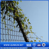 Safety and Low Price Chain Link Fence