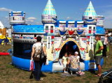 Big Inflatable Castle Type Bouncer with Mosquito Net (RB1049)