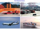 Consolidate Reliable Logistics Service From Qingdao to America
