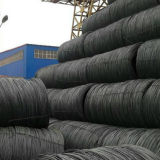 Dia 5.5~22.0mm Hot Rolled Welded Steel Wire Rod