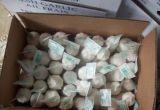 High Quality Chinese Fresh Pure White Garlic From Jinxiang Origin