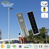 5 Years Warranty 30W All in One Solar Motion Outdoor LED Street Light for Garden