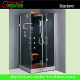 Rectangle Walk in Steam Shower Sauna Steam Room (TL-8801)