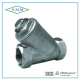 Stainless Steel Threaded Ends 800wog Y-Strainer with Blow off Plug