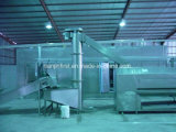 Auto French Fries Production Line Frozen French Fries Production Line