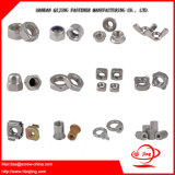Bolts and Nuts, Screw and Nuts, Hex Nuts, Square Nuts, Flange Nuts, Wing Nuts, Spring Nuts, Nylon Inset Lock Nut