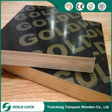 Building Material Waterproof Construction Plywood