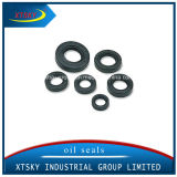 Xtsky High Quality Motorcycle Oil Seal